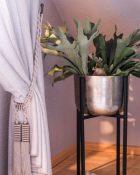 Vase Blumen Pflanzen Silber Vorhang