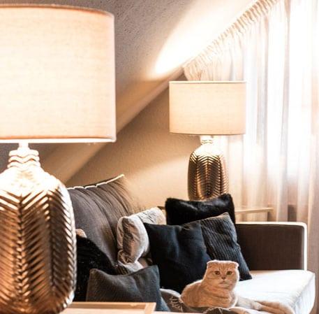 Little Greene Wandfarbe Perennial Grey 245 Wndfarbe Couch Sofa Katze Lampen Kissen